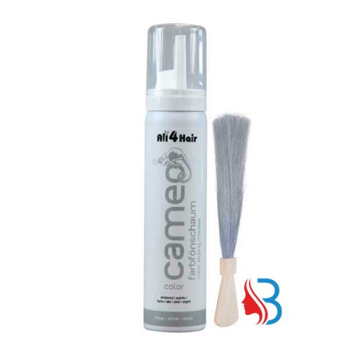 Cameo Color Style Mousse Silber 75ml