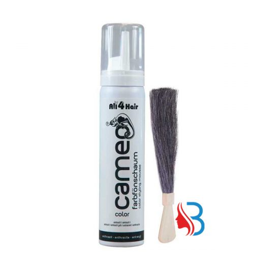 Cameo Color Style Mousse Anthrazit 75ml