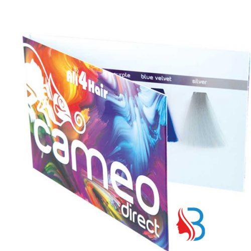 Cameo Direct Color Farbkarte